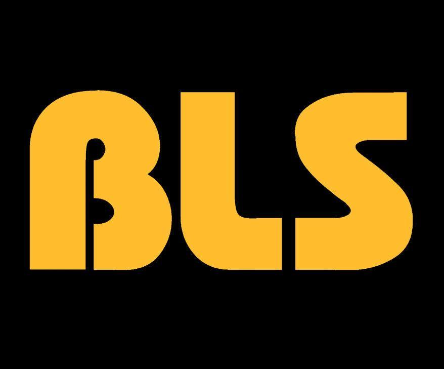 BLS – Bezpośrednia Likwidacja Szkód –